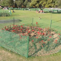 Zakir_Hussain_Rose_Garden