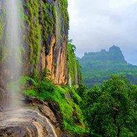 bhimashankar-forest